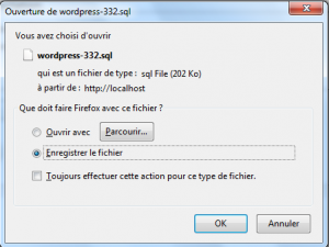 enregistrer le fichier sur votre PC